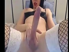 Monster Cock Shemales H T B Free Monster Cock Shemale Porn